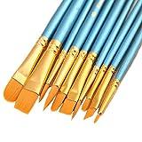 ONE HAPPY CHOICE 1 juego de 10 pinceles de pintura de pelo sintético, azul, para pintura acrílica,...